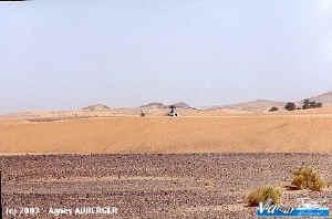 rotor_dune.jpg (40519 octets)